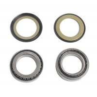 Bearing and Seal Kit (Yamaha XV1700 Roadstar Warrior)